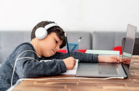 1 de cada 5 estudiantes de primaria no tiene Internet en su casa