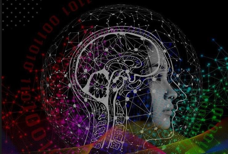 Curso: Neurociencias y enseñanza de la matemática