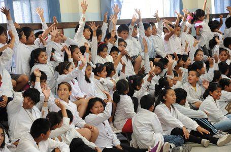 FOTO: Programa Escuelas Verdes