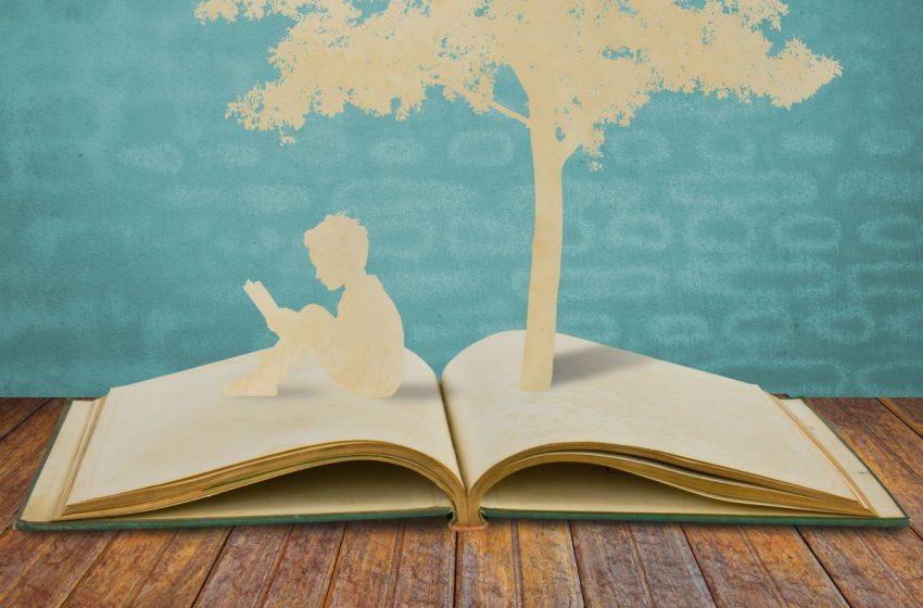 La educación, clave para construir una sociedad más resiliente