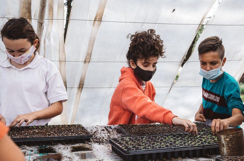 Día de la Enseñanza Agropecuaria: organizan un fogón virtual